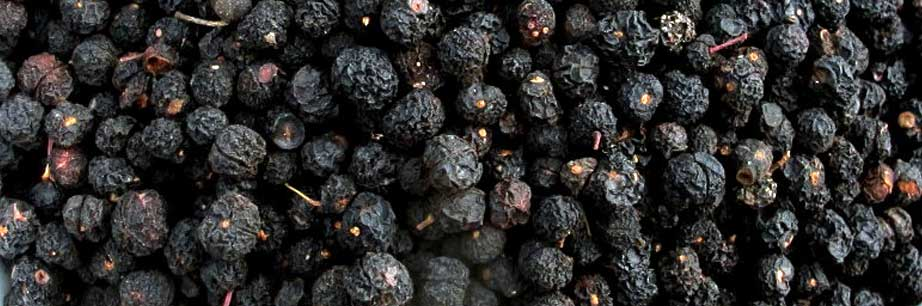 Dried Mountain Pepper Berries